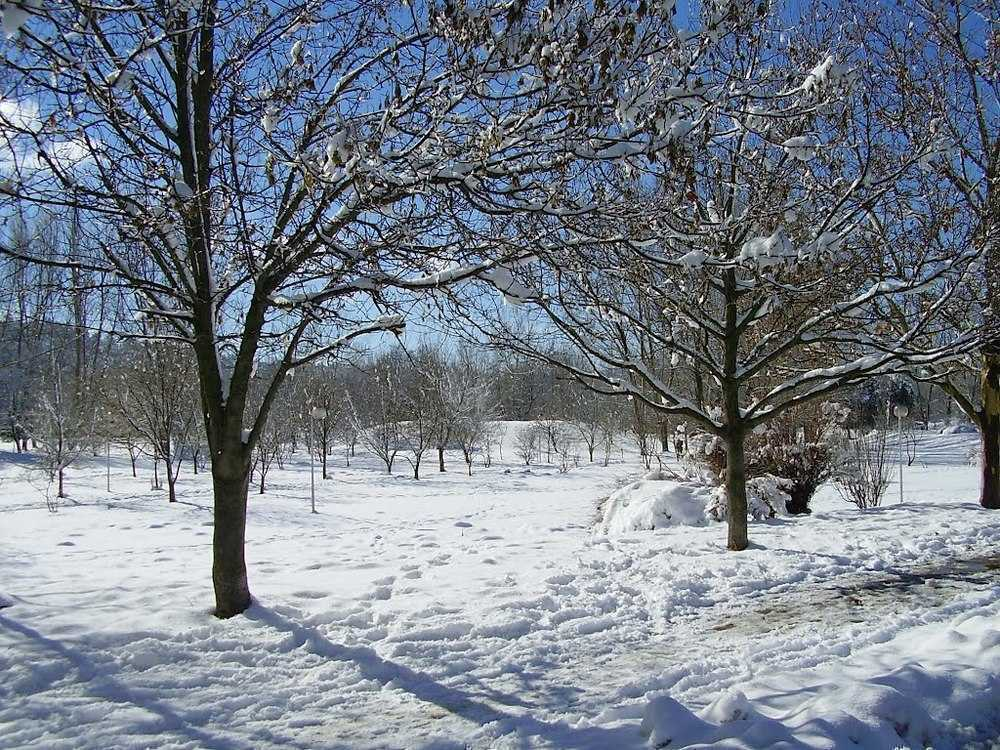 Ifrane in winter